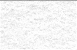 VISITEKAARTJES 3C 200G PERGA GRIJS 100 STUKS