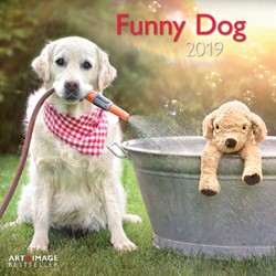 KALENDER 2019 TENEUES ART&IMAGE FUNNY DOG 30X30CM 1 STUK