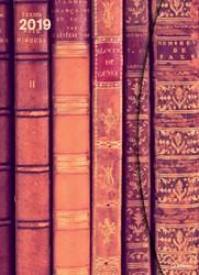 AGENDA 2019 TENEUES ANTIQUE BOOKS MAGNETO 16X22CM 1 STUK
